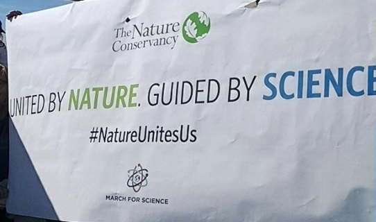 ScienceMarch StPaul poster TNC united by nature guided by science