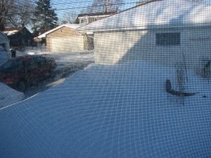 snow not garden