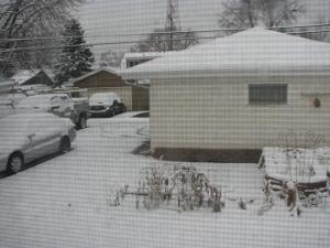 snow 2015 March 23 Monday