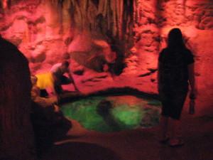 desert nocturnal cave