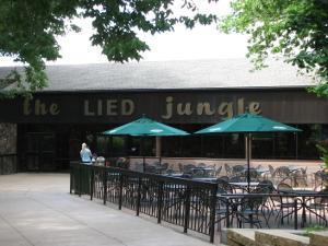 jungle Lied building