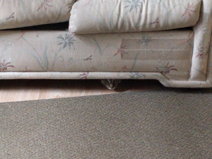 fireworks with Hope hiding under sofa 20160704 0955
