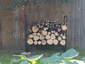 tree cut and stacked for firewood